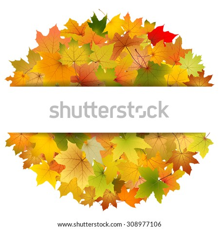 Maple autumn leaves greeting card template, vector illustration.