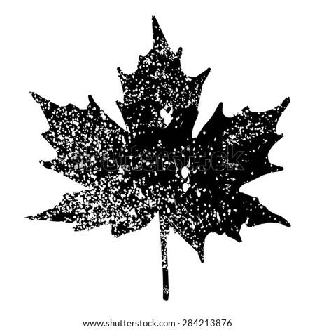 Maple Leaf Silhouette for your design. EPS10 vector illustration. - stock vector