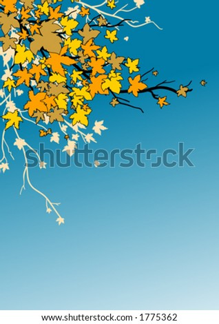 Maple leaves in autumn - stock vector