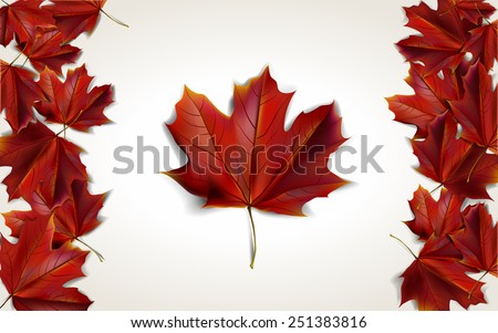 Maple leaves placed in form of Canadian flag, vector illustration - stock vector
