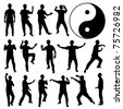 Martial Art Kung Fu Tai Chi Self Defense Exercise Fight Master People Man - stock photo