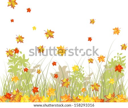 Meadow background with maple leaves. All objects are separated. Vector illustration.