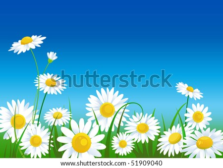 meadow with daisies with space for text - stock vector