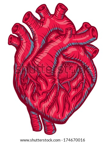 Medical Heart - stock vector