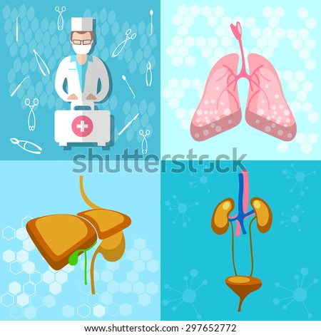 Medical icon collection: doctor ambulance first aid human organs hospital lungs liver kidneys bladder vector illustration - stock vector