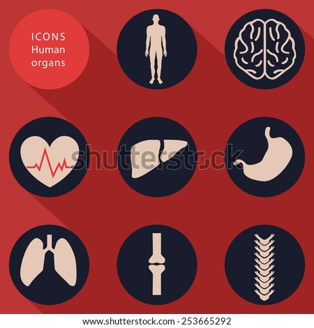 Medical icons, human bodies, flat design, vector - stock vector
