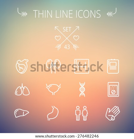 Medicine thin line icon set for web and mobile. Set includes-human internal organs, hospital, DNA icons. Modern minimalistic flat design. Vector white icon on gradient mesh background. - stock vector