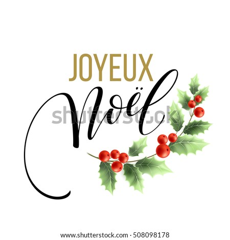Merry christmas card template greetings french stock vector merry christmas card template with greetings in french language joyeux noel vector illustration eps10 m4hsunfo