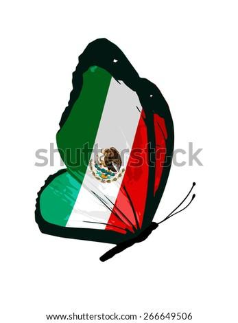 Mexico flag butterfly - vector - stock vector