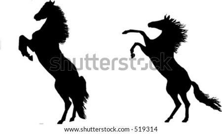 Mighty stallions rearing - stock vector