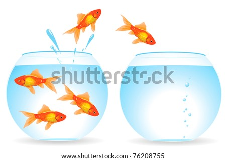 Migration of fishes from an aquarium in an aquarium - stock vector
