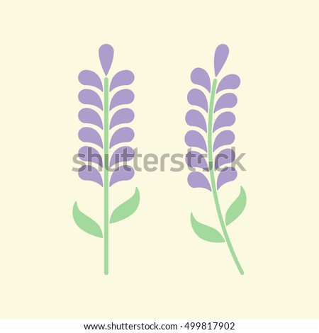 Minimal lavender with leafs isolated on background. Lavender icon or logo. Vector illustration. Abstract flowers in flat style. Lavender flower