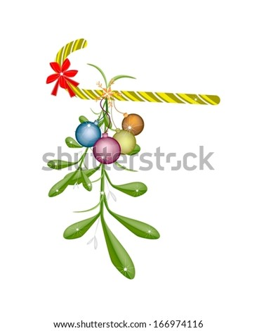 Mistletoe Bunch and Christmas Balls with A Christmas Red Ribbon and Candy Cane For Christmas Celebration, Isolated on White Background  - stock vector
