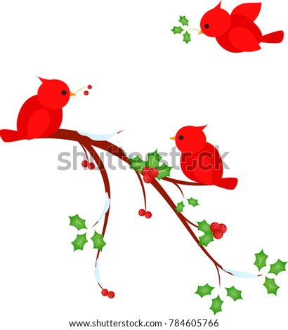 cardinal and red berries stock images royalty free images