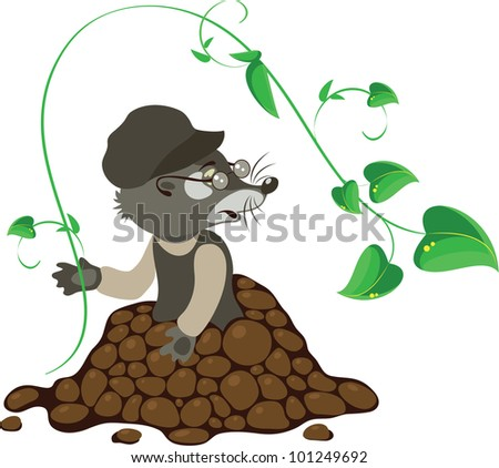 mole, vector illustration - stock vector