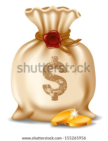 Money bag isolated on white background. Vector illustration. - stock vector