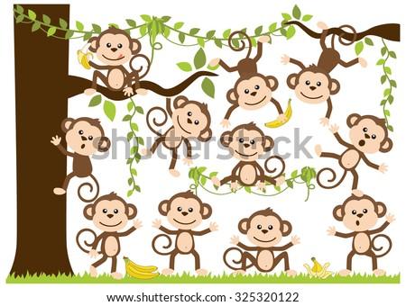 Monkey Around - stock vector