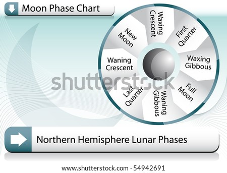 Moon Phase Chart - stock vector