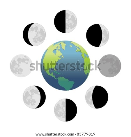 Moon phases - stock vector