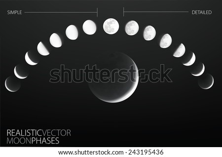 Moon phases , realistic and simple vector template - stock vector