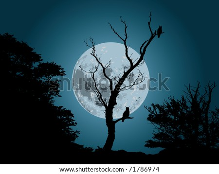 moonlight forest background with silhouette of owl - stock vector