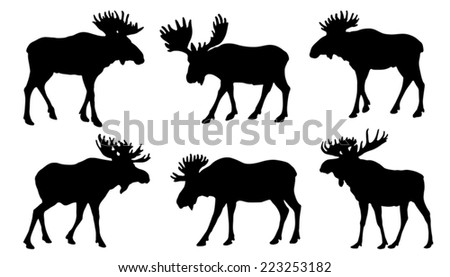 moose silhouttes on the white background - stock vector