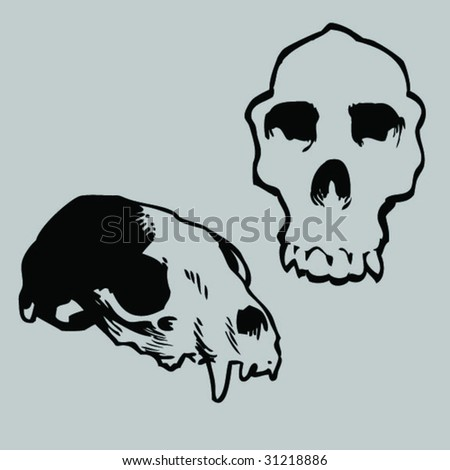 more animal skulls - stock vector