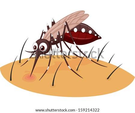 Mosquito cartoon sucking blood from human skin - stock vector