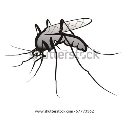 mosquito isolated sketch in black lines - stock vector
