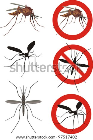 mosquito, mosquitoes - stock vector