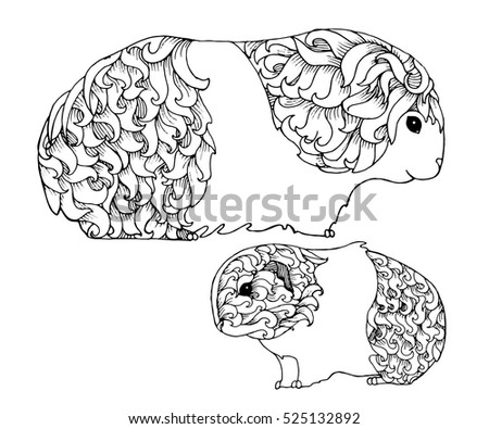 Snake Half Only Skeleton Hand Drawn Stock Vector 483081112