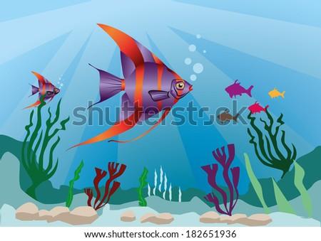 multicolor fish in marine life - stock vector