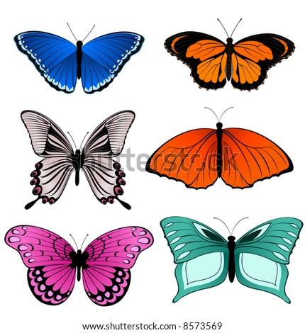 Multicolored butterflies - vector illustration - stock vector
