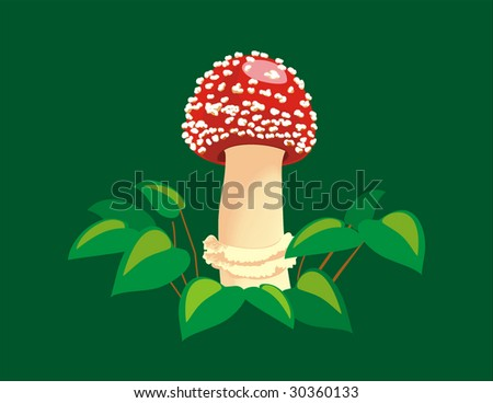 Mushroom a fly agaric, a vector, red ??????, poisonous - stock vector
