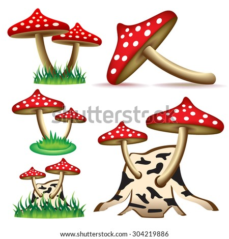 mushroom beautiful red with spots ripe delicious with a cap on the stem on a tree from the forest is isolated on a white background - stock vector