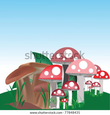 mushroom vector illustration - stock vector