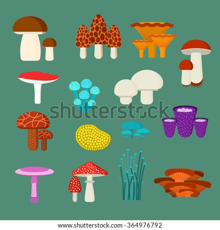 Mushrooms vector illustration set. Different types of mushrooms isolated on green background. Nature mushrooms for cook food and poisonous mushrooms flat style - stock vector