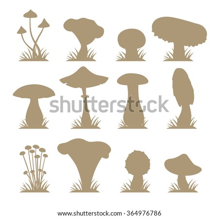 Mushrooms vector silhouette illustration set. Different types of mushrooms isolated on white background. Nature mushrooms for cook food and poisonous mushrooms flat style - stock vector