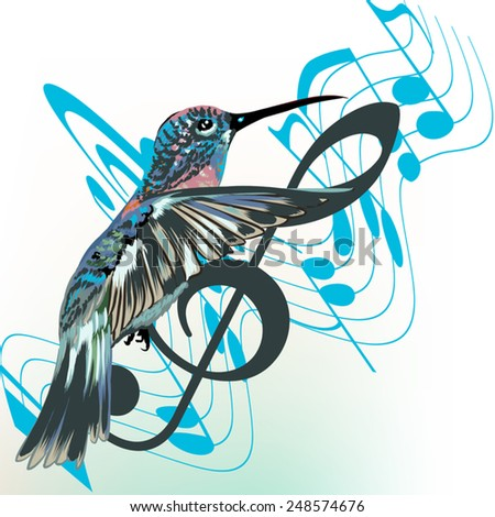 Music background with notes, treble clef and hummingbird - stock vector