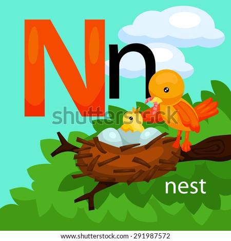 n for nest stock images royalty free images vectors shutterstock. Black Bedroom Furniture Sets. Home Design Ideas
