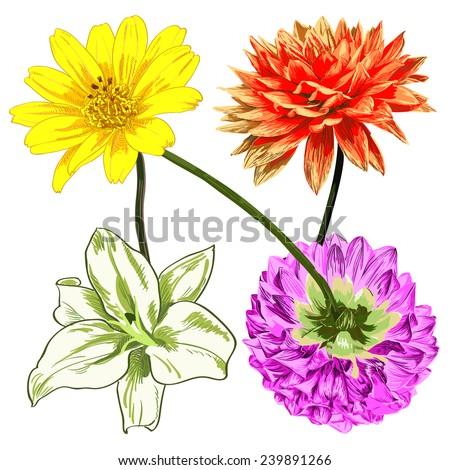 N letter shape pattern , floral vector pattern - stock vector
