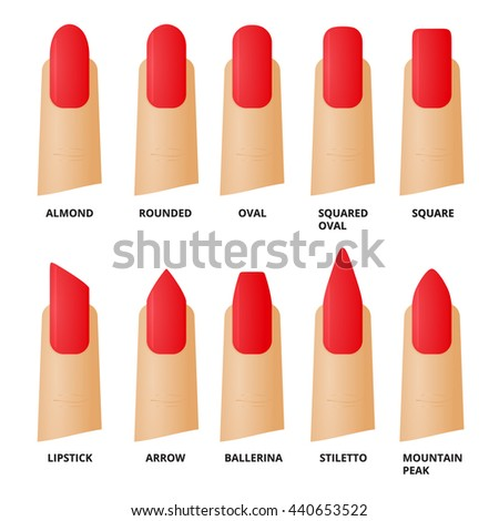 Nail forms. Female manicure. Set kinds of nails. Fashion nail shape. Icons nail shape. Collection of kinds of nails. Vector illustration. - stock vector