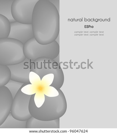 natural background with place for text, the spa still life 2