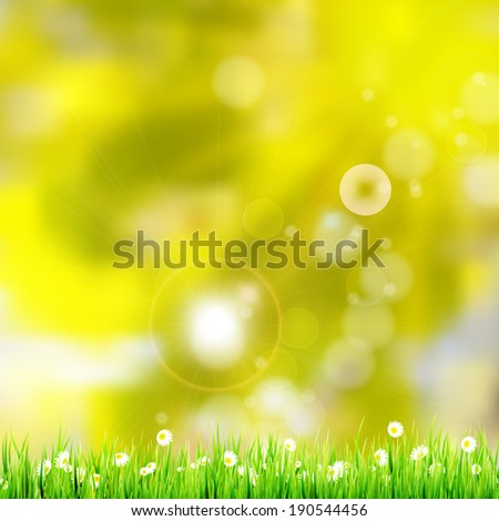 Natural green background with selective focus. And also includes EPS 10 vector - stock vector