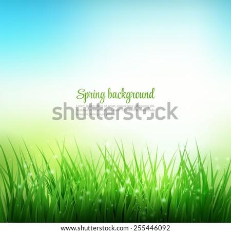 Natural green grass background. Vector illustration.  - stock vector