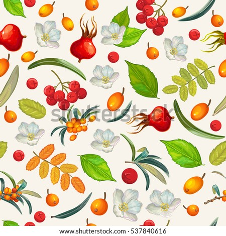 Natural organic berries seamless pattern. Vector illustration.