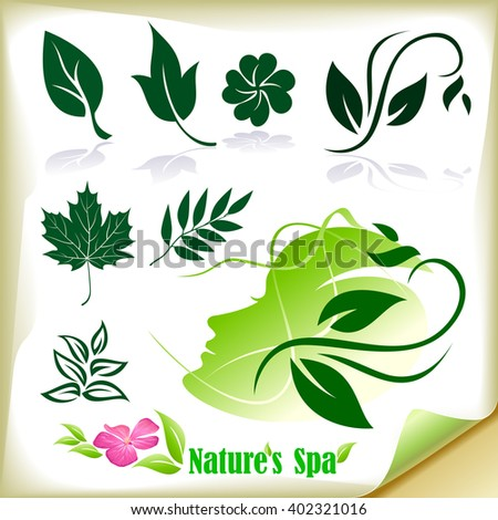 Natural Spa - stock vector