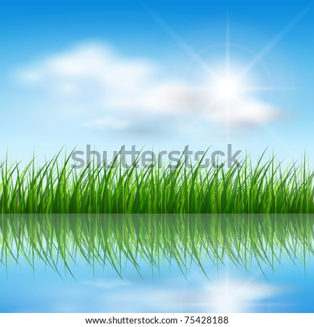 Nature background, green grass over a blue sky, vector. - stock vector