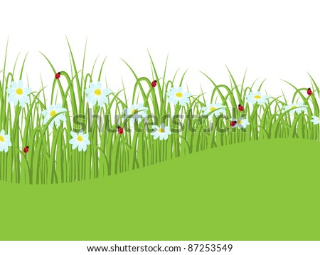 Nature background with grass and daisies - stock vector