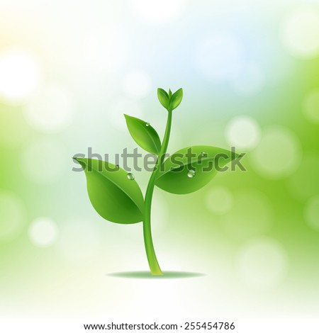 Nature Background With Plant And Drop Water With Gradient Mesh, Vector Illustration - stock vector